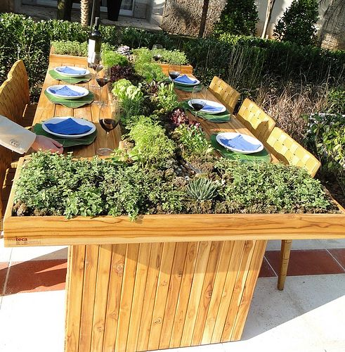 a light stained dining table with a large planter and fresh herbs you can pick and instantly eat
