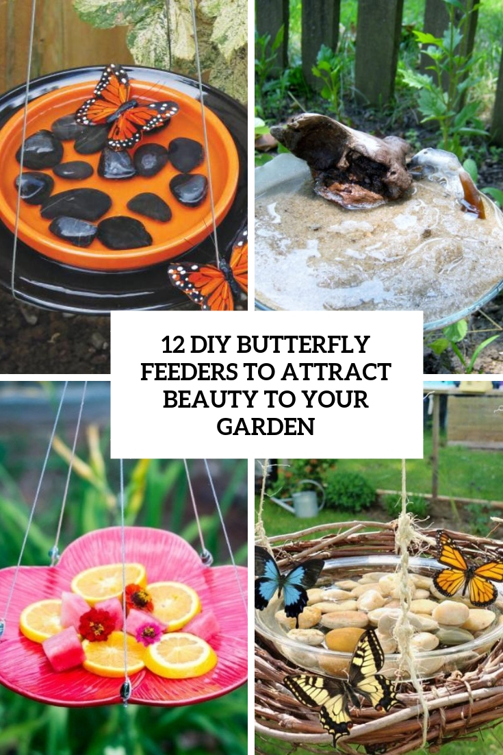 12 DIY Butterfly Feeders To Attract Beauty To Your Garden