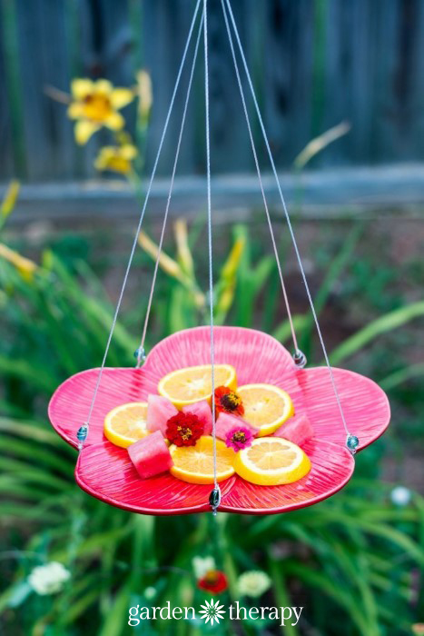DIY flower plate butterfly feeder (via gardentherapy.ca)