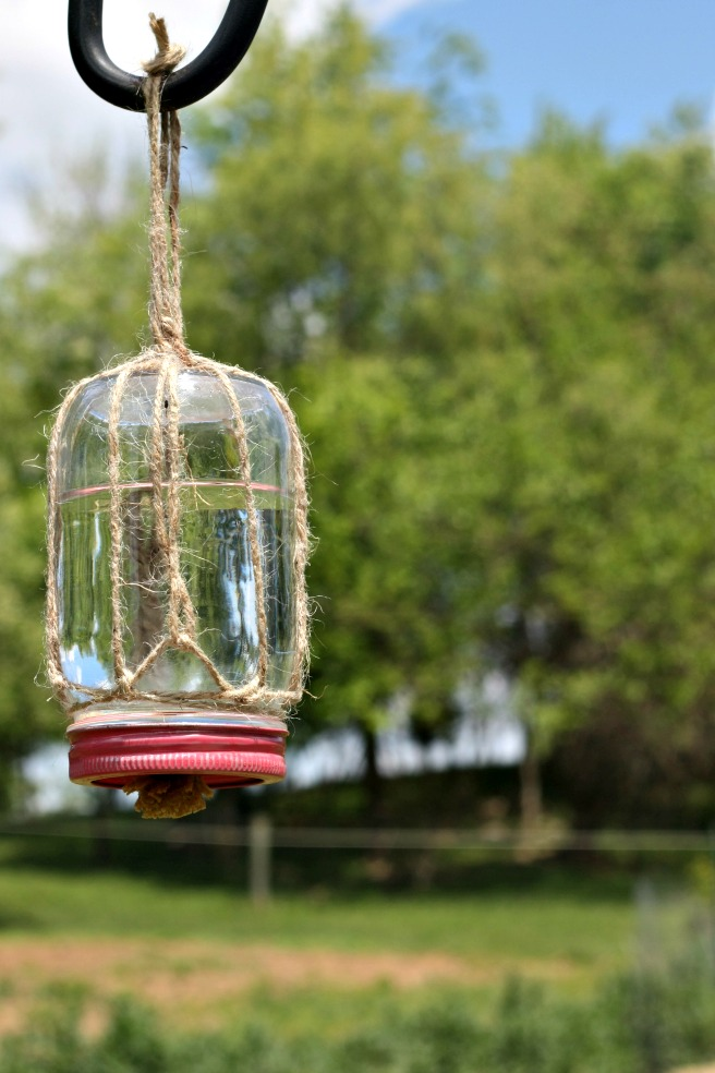 DIY mason jar butterfly feeder (via traditionalcookingschool.com)