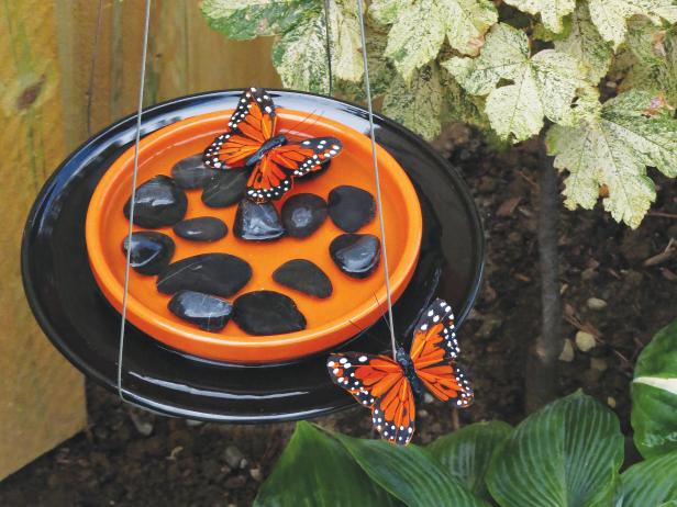 DIY butterfly feeder with pebbles (via www.diynetwork.com)