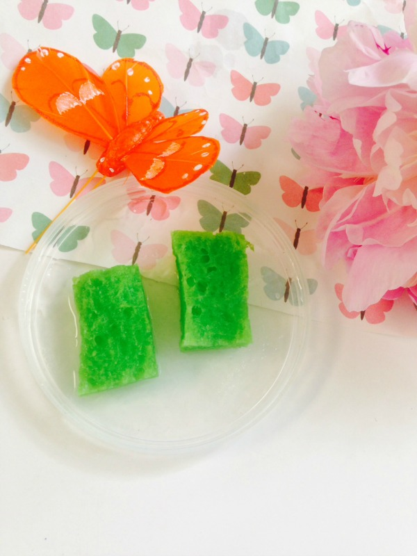 DIY simple and fast butterfly feeder using sponges (via thehomespunhydrangea.com)
