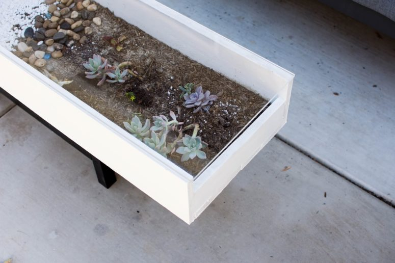 DIY modern coffee table with succulents (via www.snugglebuguniversity.com)