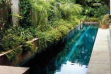 10 a lush garden with lots of greenery, a long and narrow pool clad with stone and a stone deck