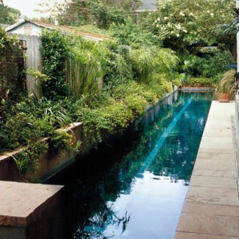 a lush garden with lots of greenery, a long and narrow pool clad with stone and a stone deck