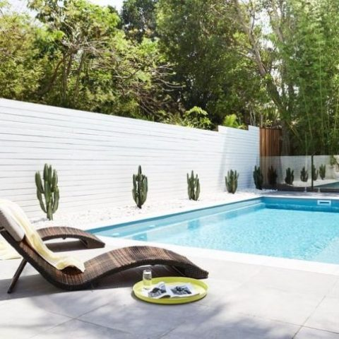stylish curved wooden loungers with pillows and planted cacti along the pool for a cool minimal look