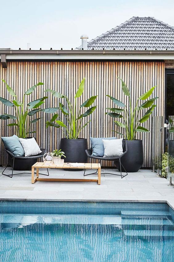wicker chairs, a wooden coffee table and some potted plants for a cozy contemporary pool deck space