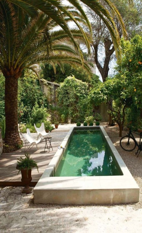 a lush tropical garden, a small wooden deck with butterfly chairs with a long and narrow pool in concrete