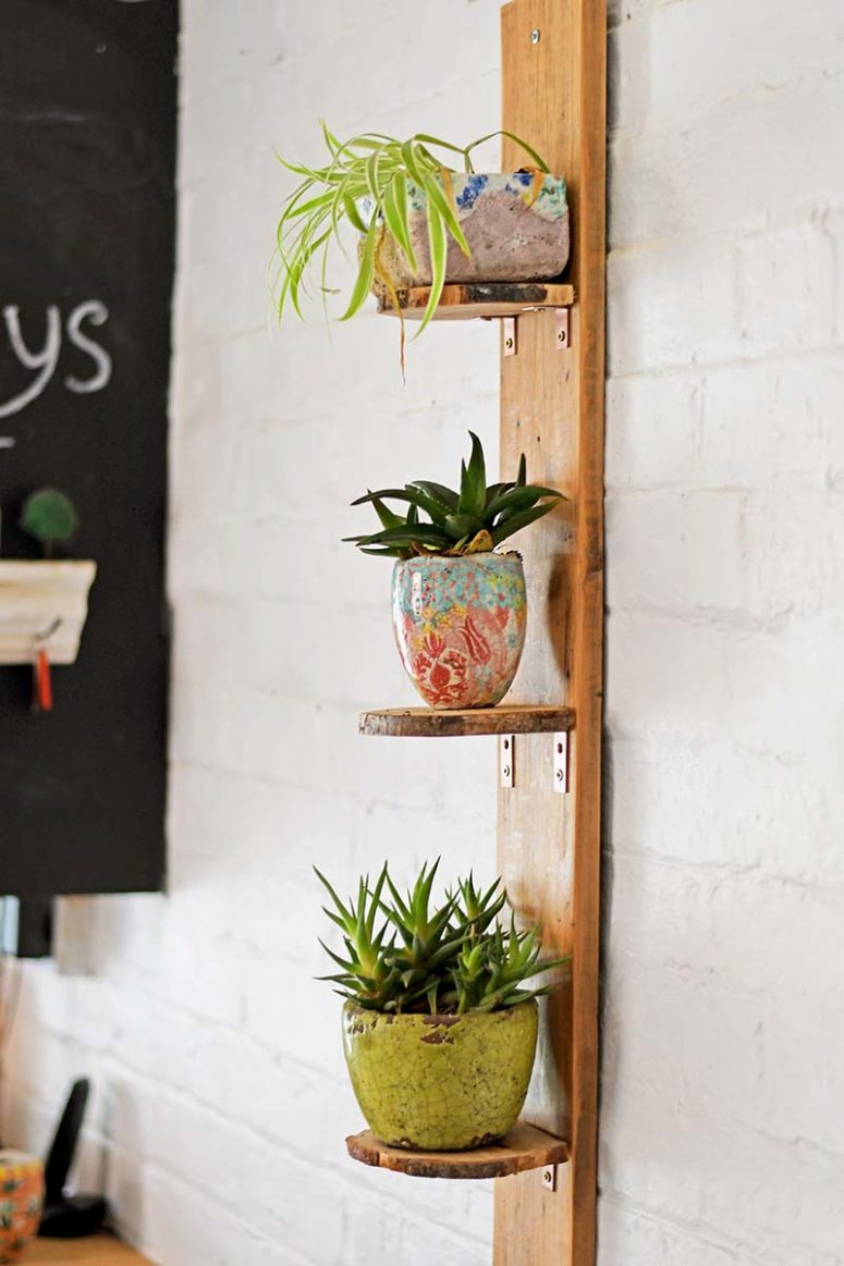 DIY wood slice plant shelf with a live edge (via www.pillarboxblue.com)