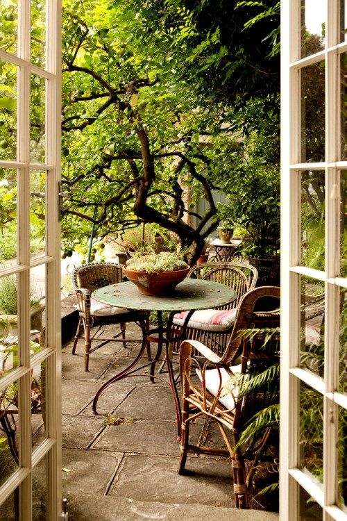 a rustic patio with rattan chairs, an elegant vintage table and potted plants all around