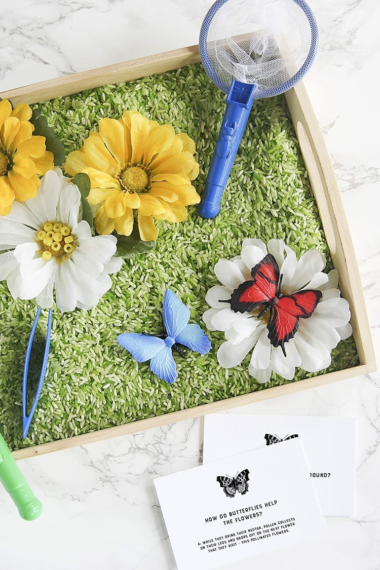 DIY butterfly and flower sensory bin (via www.shrimpsaladcircus.com)