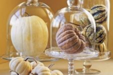 18 natural pumpkins in glass bowls and glass cloches will accent them without any painting or stenciling