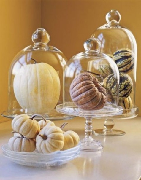 natural pumpkins in glass bowls and glass cloches will accent them without any painting or stenciling