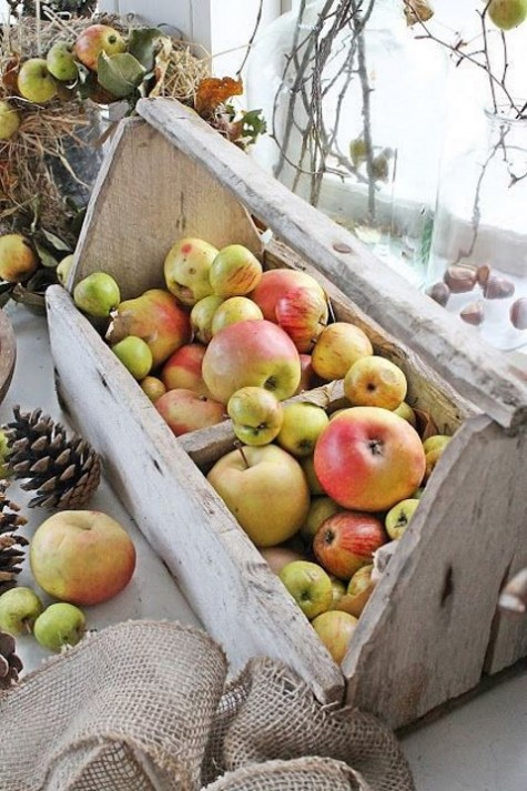 a rustic vintage toolbox with apples is a creative and practical display, you may eat them all