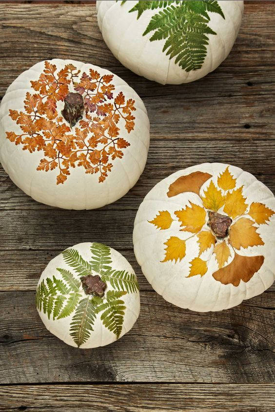 white pumpkins spruced up with bright flal and fern leaves is a very creative idea to decorate for the fall