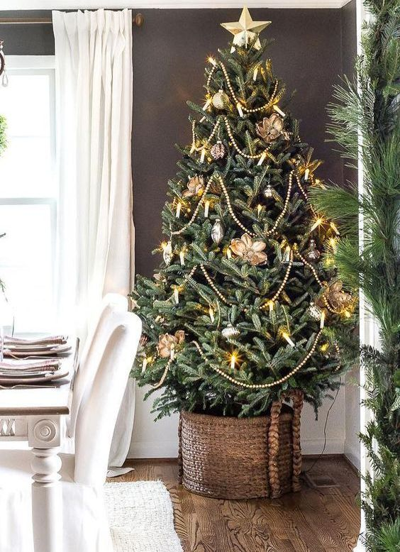 a bold green Christmas tree in a basket with gold flower ornaments, beads, lights and a star topper
