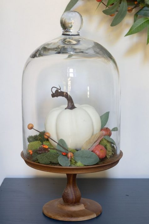 a cloche with a wooden base with moss, a faux pumpkin and berries and veggies plus foliage