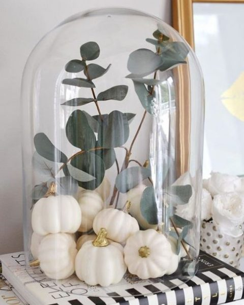 a modern cloche display with little faux white pumpkins and pale euclayptus is a very chic idea