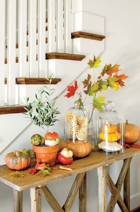 cute displays with natural pumpkins and bleached pinecones placed on a pumpkin is a creative arrangement
