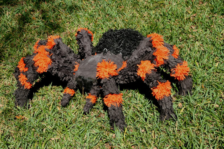 DIY large and bold tarantula pinata for Halloween (via pinataboy.com)