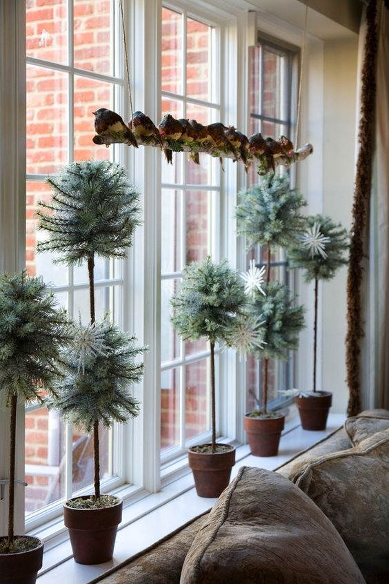 cool evergreen Christmas topiaries in pots are an unexpected and non-traditional decoration for the holidays