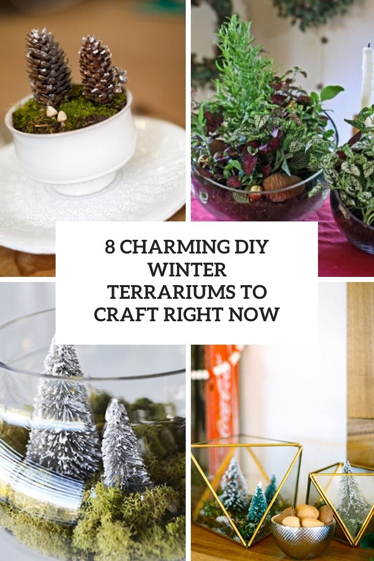 8 Charming DIY Winter Terrariums To Craft Right Now