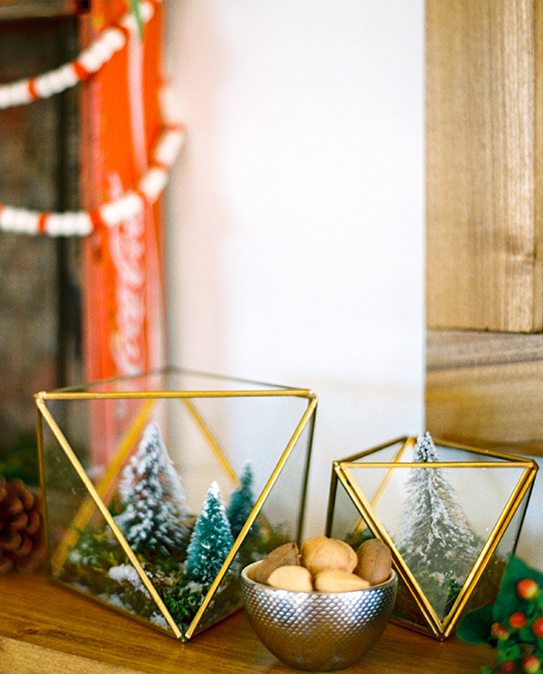 DIY glam winter terrariums with moss and bottlebrush trees (via www.avestyles.com)