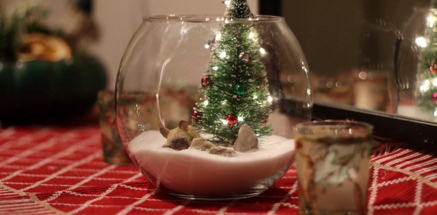 DIY all faux winter terrarium with lights
