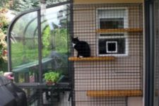 02 a stylish cat enclosure that is attached to the window and a glazed space for breakfasts outdoors