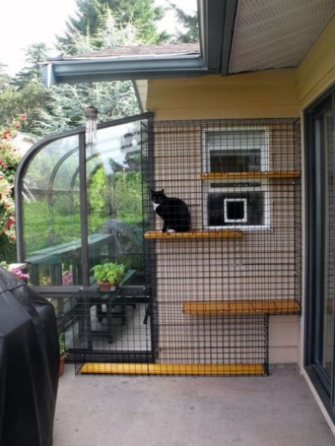 a stylish cat enclosure that is attached to the window and a glazed space for breakfasts outdoors