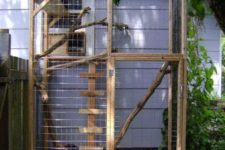 03 a small cat enclosure with some shelves and stairs, branches and greenery all over to make staying here pleasant