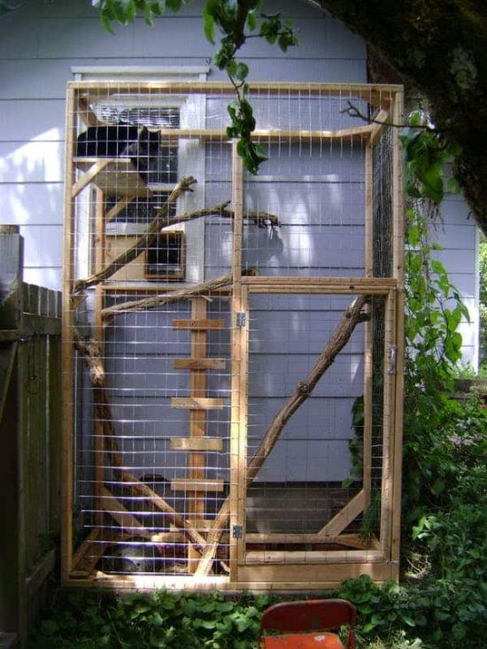 a small cat enclosure with some shelves and stairs, branches and greenery all over to make staying here pleasant
