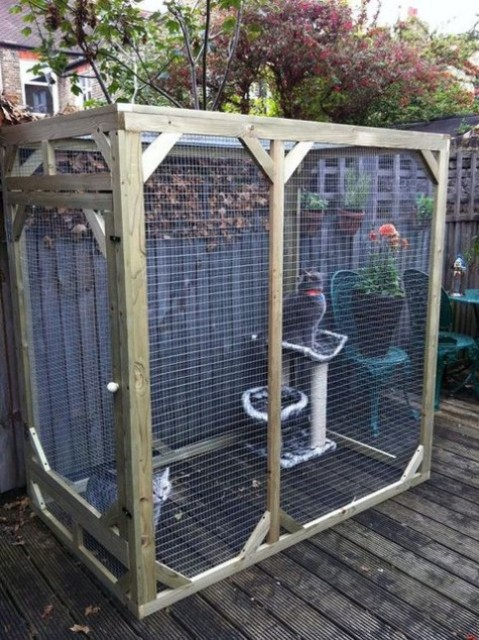 a small cat enclosure with a tower is safe enough and features enough space for even two or three cats
