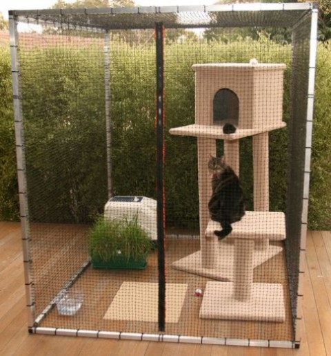a small cat enclosure with a tiered cat tower, greenery in a pot, some water, a toilet and some toys is a very thought through space
