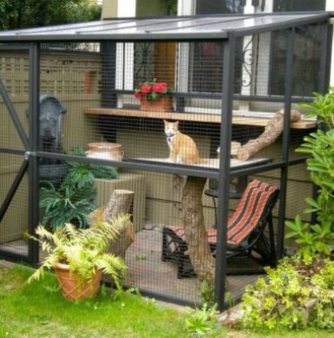 a small cat enclosure with a cat tree, a chair, potted plants, a fountain and some blooms is a cool space to spend time
