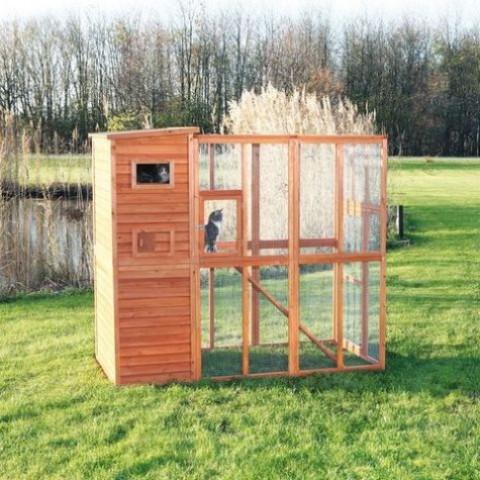 a comfortable outdoor cat enclosure with an open space to enjoy grass and a closed shelter-like space to hide there