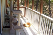 12 a cat enclosure porch with a cool cat tree, some beds and some more furniture for the cat to lie on