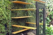 a modern small cat enclosure with shelves, a roof and a living wall to make the space feel fresh and outdoor-like