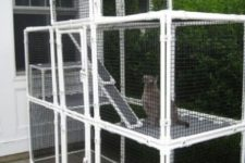 19 a large cat enclosure with several tiers and benches is a cool place to be and the pets can choose levels themselves