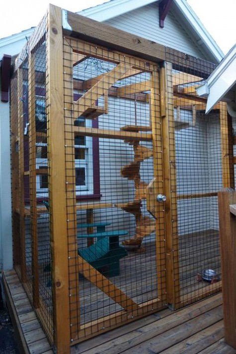 a large cat enclosure with shelves, stairs, a cool stairscase up to the top is a whole gym for a cat