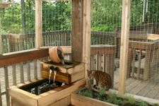 22 a large catio with potted greenery, a mini fountain and lots of shelves overhead for the cat to jump