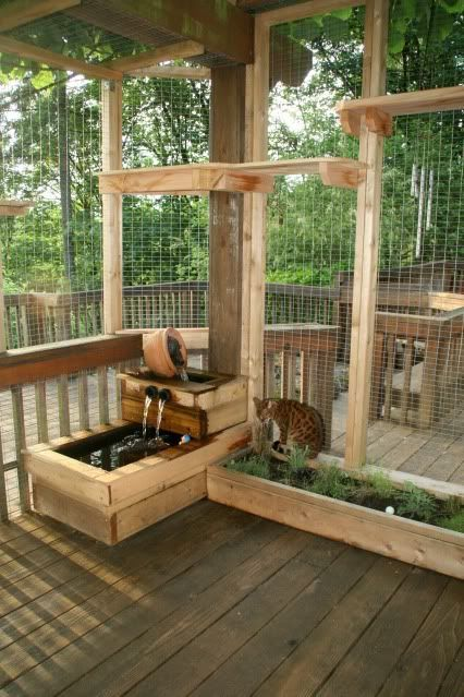 a large catio with potted greenery, a mini fountain and lots of shelves overhead for the cat to jump
