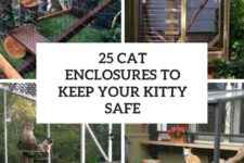 25 cat enclosures to keep your kitty safe cover