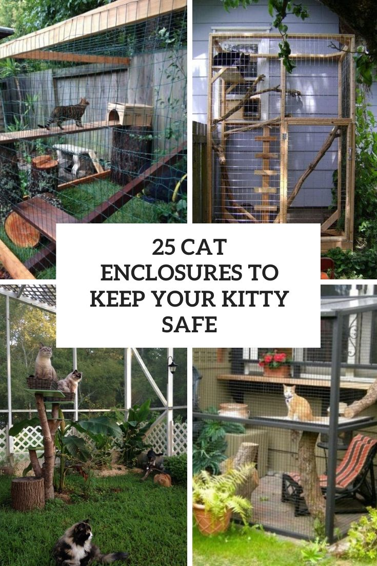25 Cat Enclosures To Keep Your Kitty Safe