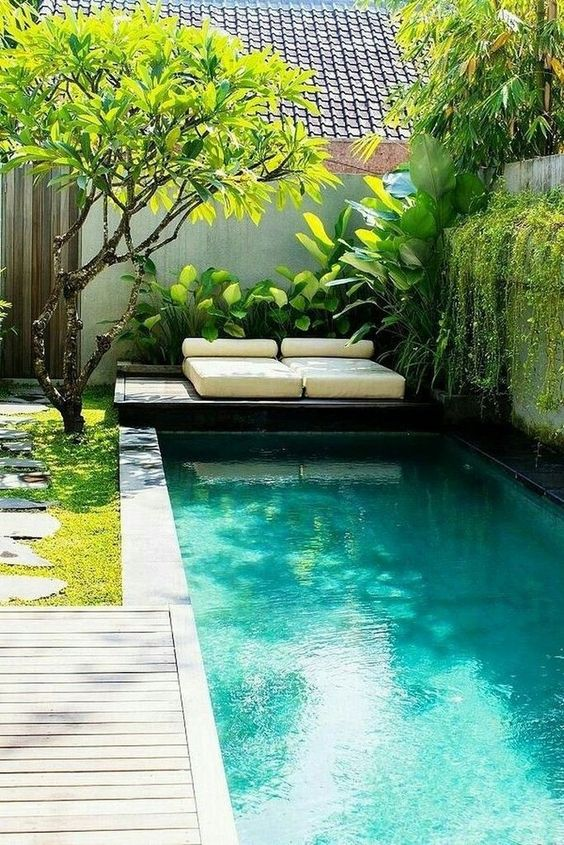 a lush tropical backyard with lot sof greneery and trees, a plunge pool and a deck with loungers over it