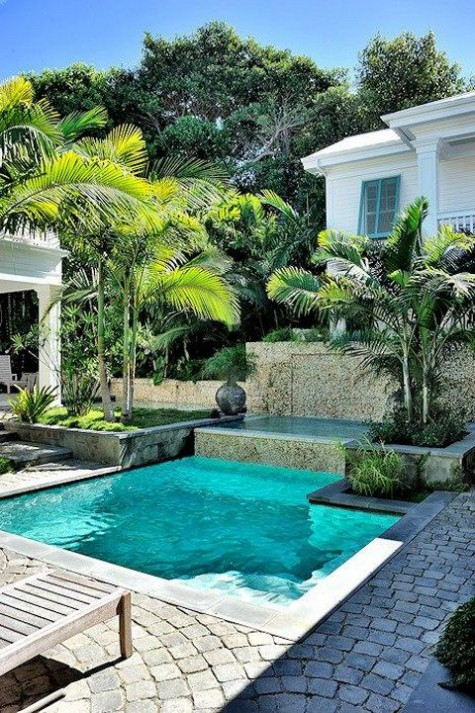 a modern tropical backyard with grass, tropical trees, greenery in vases and a plunge pool plus wooden loungers