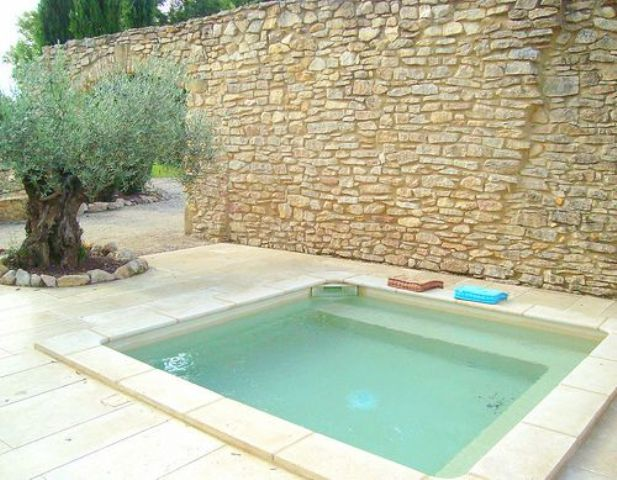 a natural backyard clad with tiles and stones, a plunge pool and some trees planted right in the tiles