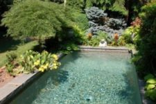 a natural backyard with potted plants and greenery, some bright blooms and a plunge pool clad with tiles
