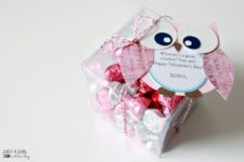 DIY owl Valentine's Day teacher gift with candies