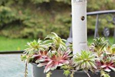 DIY succulent patio table planter with an umbrella